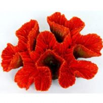 Red Ridge Coral ~ Aquarium Coral Ornament